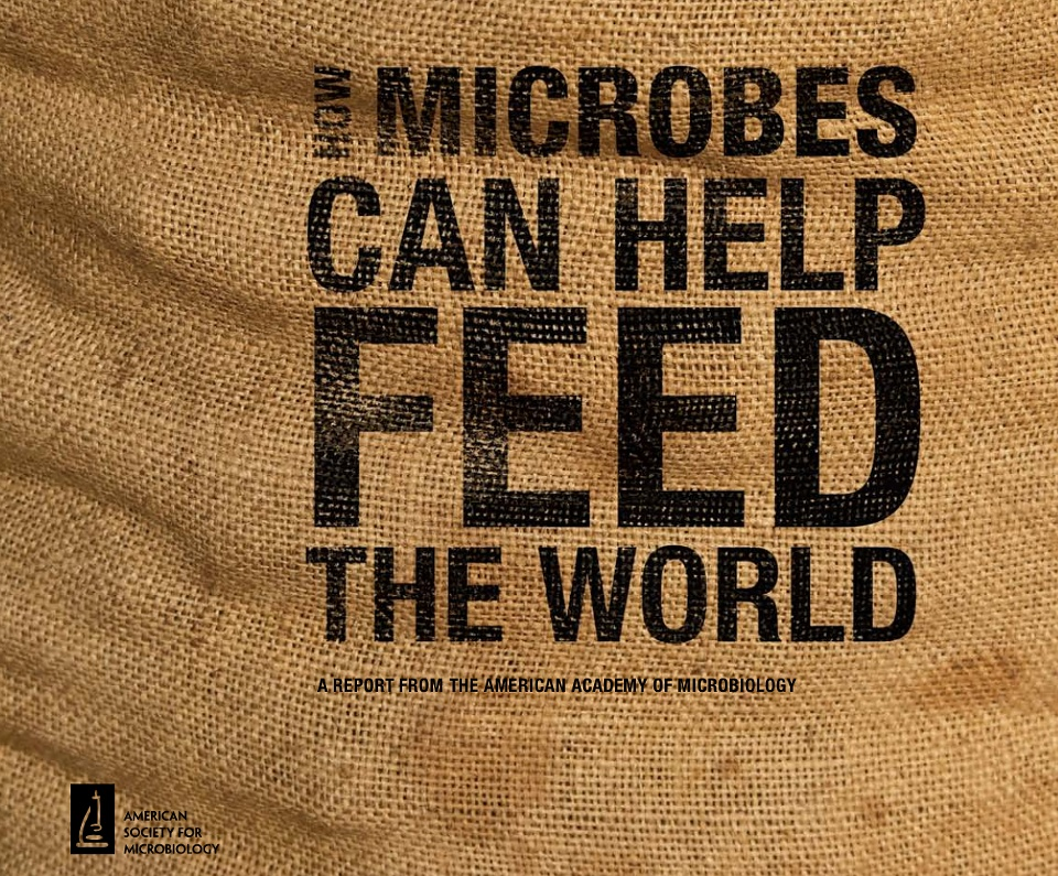 FeedTheWorld microbes